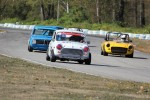 Geoff Tupholme (Mini), Al Harvey (MGB), Leigh Anderson (BMW 1600), Paul Haym (Datsun 510) (hidden), Pierce Isaacs (MGB) (hidden) - Brent Martin photo